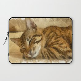 Let Sleeping Cats Lie Laptop Sleeve