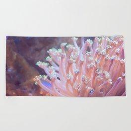 Anemone (?) Beach Towel