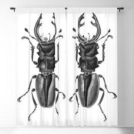 Beetle 17 Blackout Curtain