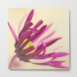 ColorFlow Metal Print