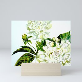 White Peonies in watercolor Mini Art Print