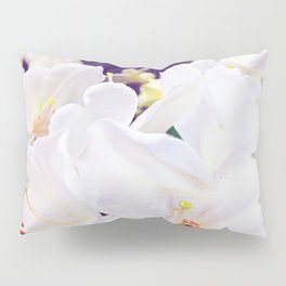 Softer Pillow Sham