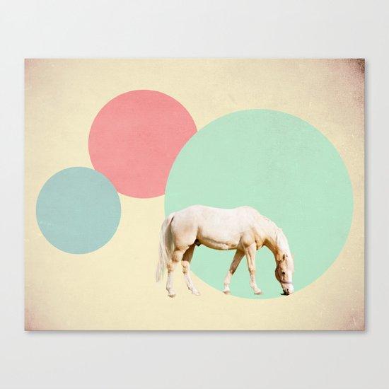 Mr. Horse Canvas Print
