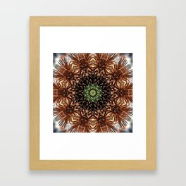 Nature mandala - Autumn coneflower seedhead Framed Art Print