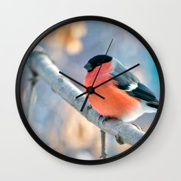 Awesome Cute Little Orange Chest Bird Sitting On Twig Zoom UHD Wall Clock