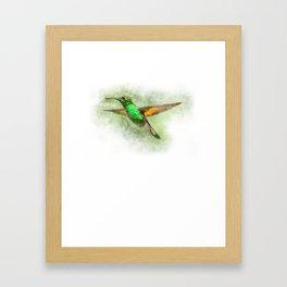 Colorful Hummingbird Illustration Bird Lover Biologist Framed Art Print