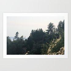 Foliage 1 Art Print