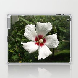 Hibiscus, White Laptop & iPad Skin