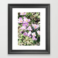 Hedgerow Framed Art Print