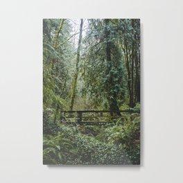 Fairie Bridge Metal Print