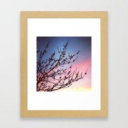 Nature Lovers Framed Art Print