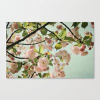 blush Canvas Prints featuring Blush by Bella Blue Photography