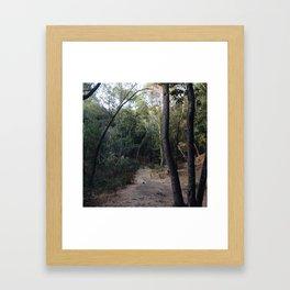 In The Wilderness Framed Art Print