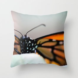 Monarch Danaus Plexippus Throw Pillow