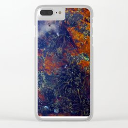 Tide Pool in Gloucester Clear iPhone Case