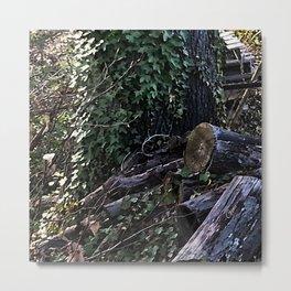 Graveyard of the Trees Metal Print