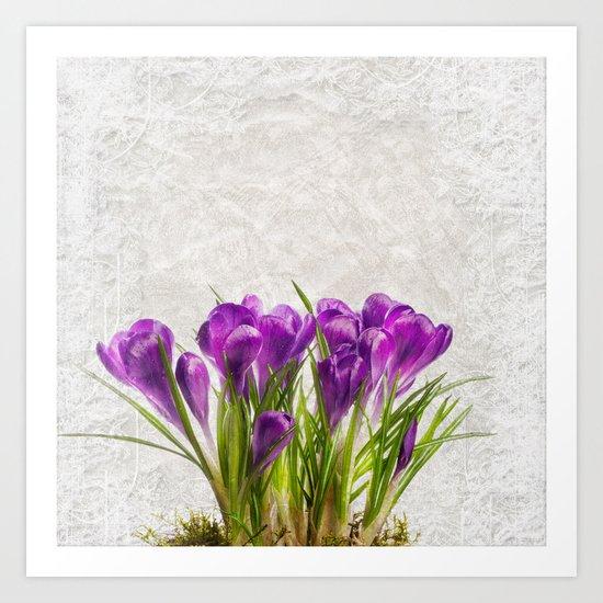 Spring purple flower Art Print