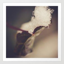 Snow Filled Leaf Art Print