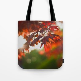 Indian Summer III Season Autum red Leaves Fall Tote Bag