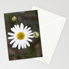 One Daisy Stationery Cards