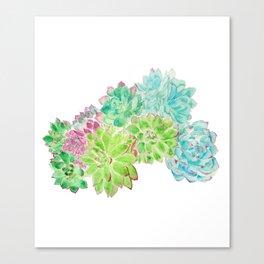 succulent arrangement watercolor painting Canvas Print