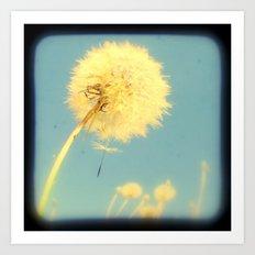 Dandelions #4 Art Print