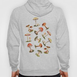 Magical Mushrooms Hoody