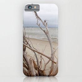 Driftwood, Cloudy Day on the Outer Banks Beach iPhone Case
