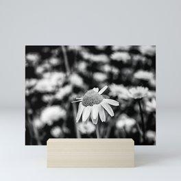 Singularity II - Black & White Mini Art Print
