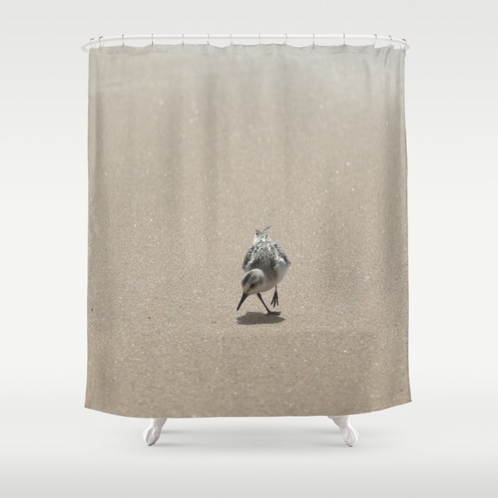 Sandpiper Bird On Wet Sand Shower Curtain By Annaki