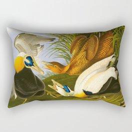 Common Eider Duck Rectangular Pillow