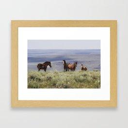 On the Mountain Framed Art Print