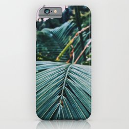 Palm leaves in a cold place iPhone Case