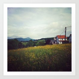 Fields from the Pyrenees Art Print