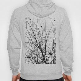 Black white tree branch bird nature pattern Hoody