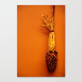Hanging Corn  Canvas Print
