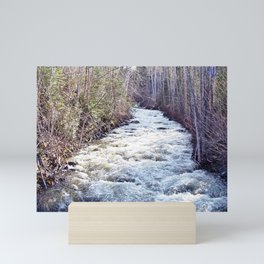 White Water in the Forest Mini Art Print