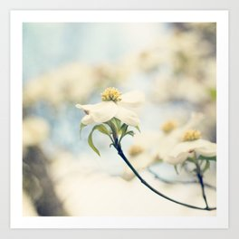 Love, the Dogwood Art Print