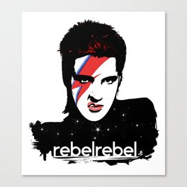 We Are All StarDust Rebel Canvas Print