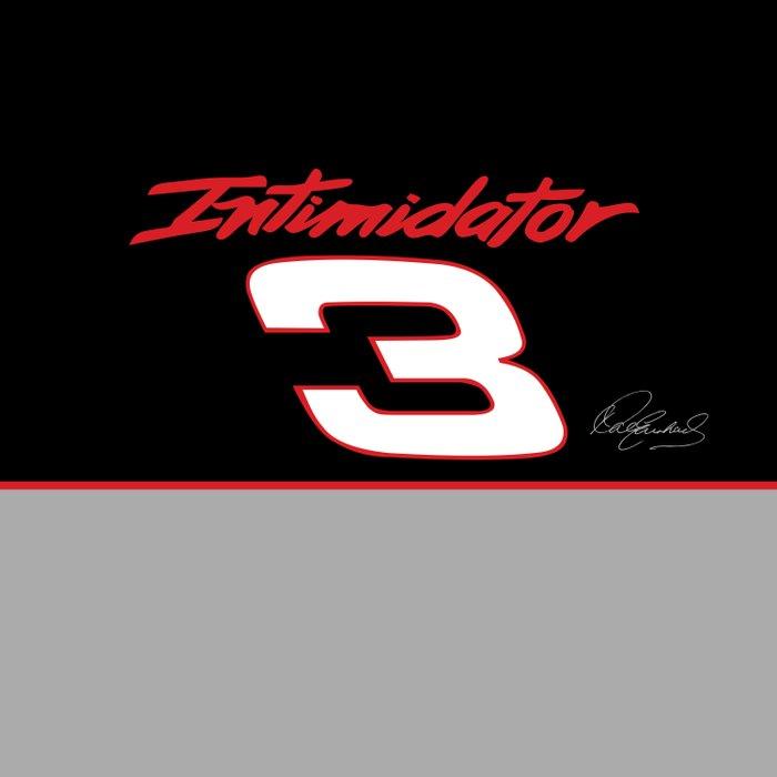Dale Earnhardt Intimidator #3 Comforters