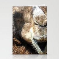 camel Stationery Cards featuring camel by Laura Grove