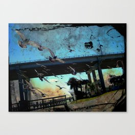Pigeons on the South Causeway Canvas Print