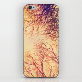 High up in the trees iPhone Skin