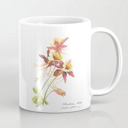 Columbine Wildflowers - Watercolor Painting - Susanne Johnson Art Coffee Mug
