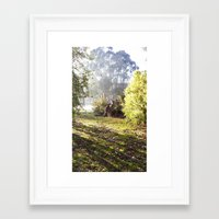 kangaroo Framed Art Prints featuring Kangaroo by Nove Studio