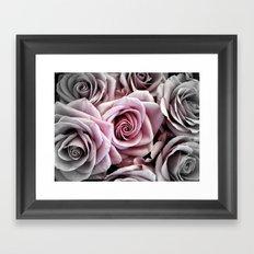 Pink Rose : Pop of Color Framed Art Print