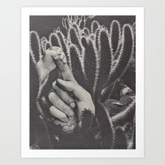 Find The Soft Amidst The Sharp Art Print