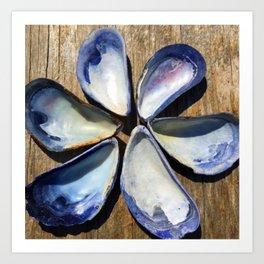 Blue Seashell Flower Art Print