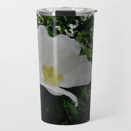 Wild White Rose in Full Bloom Travel Mug