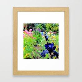 Iris Medley Framed Art Print